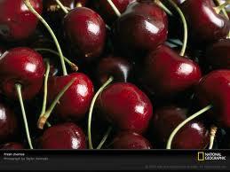 Sour Cherries: Natures Painkiller